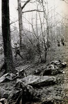 """""""Green Hell"""".The Battle of the Hürtgen Forest Americans advance past the bodies of four Germans killed by a single grenade while firing a captured U.S. machine-gun."""