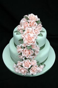 Peachy green wedding cake - This is the first two tiers of a wedding cake, which also has an identical cake, minus the roses and ribbon as a cutting cake, because the groom didn't want anything more than a 2 tiered cake.  It's a 10 inch and 7 inch chocolate and white chocolate mud in alternating layers filled with whipped ganache and covered in avocado green fondant with sugar roses and piped detail in avocado green royal icing.