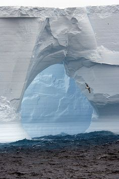 Robert Bingham photography      |   Hole in the Ice, 2005 |    South Sandwich Islands