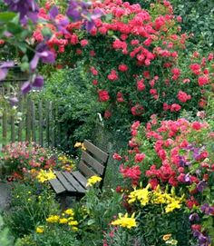 In the garden ~