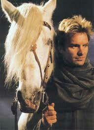 Sting&horse