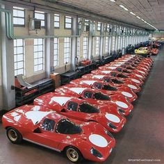 Ferrari 512s lined up at the factory for FIA homologation (Ferrari photo) as part of Louis Galanos' profile of the 1970 Daytona 24 Hours.