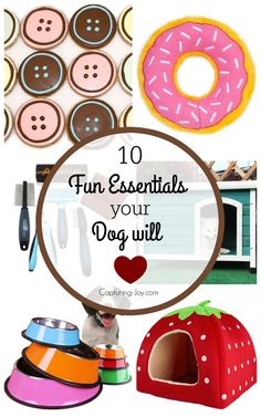 10 fun essentials your dog and you will love! Capturing-Joy.com