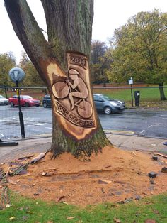 Tour de France 2014 Tree Carving...does this hurt the tree??? . I wonder if they got approval for this ..