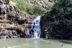 Waimea Falls Waterfall Hike