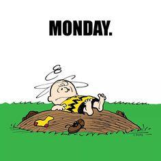 Lunes...siempre difícil!