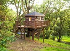 casita en el árbol  #treehouse