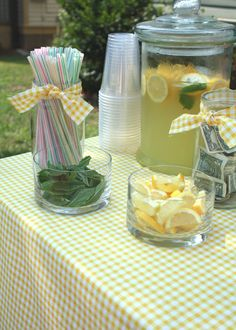 set up a FREE lemonade stand at a nearby greenway, park or bike trail;  accept donations for local animal shelter : )