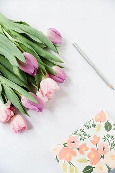 Styled Stock Photo Flowers Notebook Pencil on White / feminine desktop / by Petra Veikkola on Creative Market