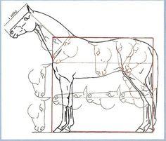Зарисовка лошади