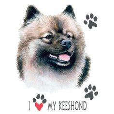 Love My Keeshond Dog HEAT PRESS TRANSFER for T Shirt Tote Sweatshirt Quilt  869a #AB