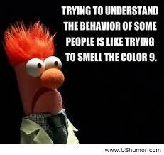 beaker muppets quotes - Google zoeken