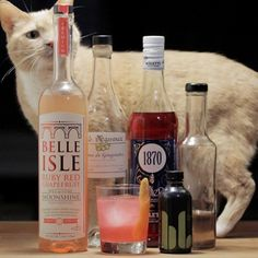 Our friend @cats.and.cocktails is at it again! -- Experimenting with #belleisleshine's new Ruby Red Grapefruit Moonshine.  1.5 oz Belle Isle RRGF Moonshine 1 oz creme de gingembre .25 oz meletti bitter liqueur .25 oz lavender simple syrup 2 dashes habanero lime bitters @bitterslab A splash of lime juice Garnish: grapefruit twist  Shake ingredients with ice and strain into an old fashioned glass. Twist peel over surface and and to drink.  #catsandcocktails #homebar #craftcocktail…