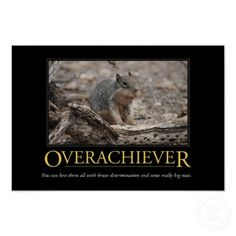 Demotivational Poster: Overachiever