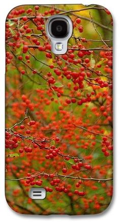 Fall Berries Samsung Galaxy S4 Case