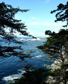 Big Sur. I literally have this picture
