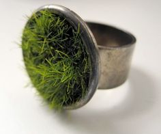 Plant Ring - really? you forget to mist it and then what.