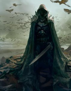 The hood makes it mysterious and the sword makes it intimidating... but the BIRDS make it terrifying!!