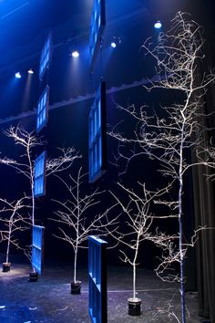 The design itself was fairly simple – they went out to some woods behind the church, cut down a few moderately sized trees and painted them white with a Wagner power sprayer. Then they took each tree and supported it using cement in a one gallon paint bucket. The windows were hung from one another using airline cable and were arranged in a curve to make the stage appear smaller.
