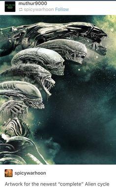 Aliens evolution