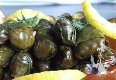 Stuffed Grapevine Leaves | giverecipe.com | #grapeleaves #stuffed #middleeast