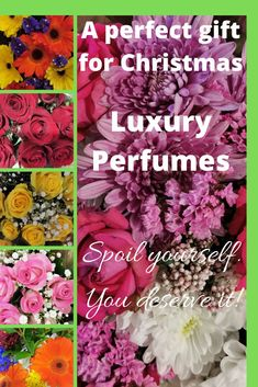 Tom Ford Luxury Perfumes are perfect gifts for Christmas! Give her/him a gift of love. Smell & Feel like a Celebrity! Tom Ford, Christmas Gifts, Fragrance, Perfume, Celebrity, Luxury, Xmas Gifts, Christmas Presents, Celebs