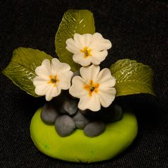 {The tutorial for this pretty Primrose is offered to members of the Ann Pickard School of Sugarcraft}