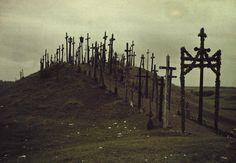 Gustav Heurlin, Walkway lined with crosses, Lithuania, 1933
