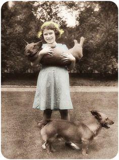 Princess Elizabeth with Corgis. Very nice picture for Princess Elizabeth(Queen Elizabeth II).