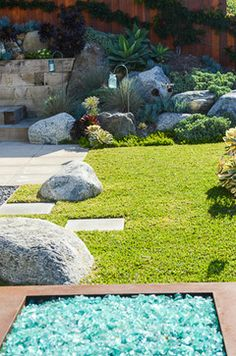 Jodie Cook Landscape Design