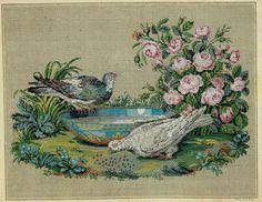 Antike Stickvorlage: handcolorierter Kupferstich, um 1850 : Tauben a.d.Tränke | eBay