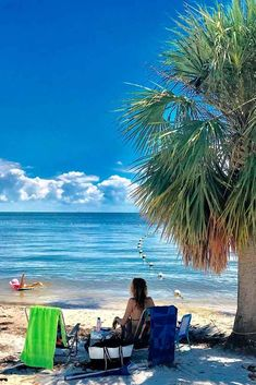 Best things to do in Florida, amazing and entertaining activities for both kids and adults in Florida, pleasant places to visit in florida Stuff To Do, Things To Do, Sandy Beaches, Meeting New People, Travel Couple, Travel Destinations, Exotic, Places To Visit, Wildlife