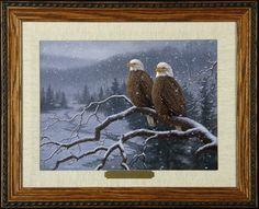 Evening Snowfall - Decorah Eagles
