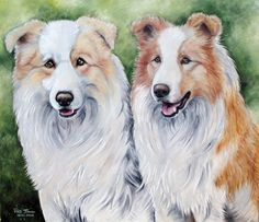 Border Collies ee-red colored by bubumo.deviantart.com on @deviantART