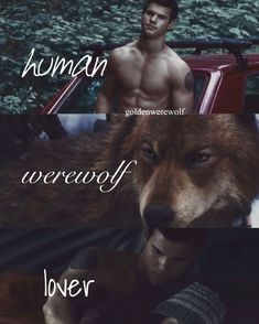So perfect in every way😂❤️ Twilight Wolf Pack, Die Twilight Saga, Twilight Saga Books, Twilight Quotes, Twilight Pictures, Twilight Movie, Vampire Twilight, Twilight Jacob And Renesmee, Jacob Black Twilight