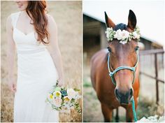 Flower crown for the horse? Sure why not! :):