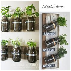 You'll have a continuous supply of seasonal fresh herbs on hand when you have a Mason Jar Herb Garden. We've included lots of ideas that will inspire and delight plus instructions on how to make them. Mason Jar Herbs, Mason Jar Herb Garden, Mason Jar Diy, Tin Can Garden Ideas, Small Gardens, Outdoor Gardens, Indoor Gardening, Garden Planters, Planter Pots