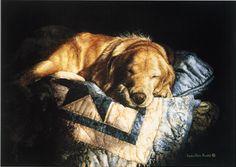 Golden Dream by Sueellen Ross