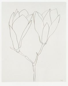 cinoh: Ellsworth Kelly