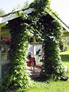 Kesäkeittiö puutarhaan | Viherpiha
