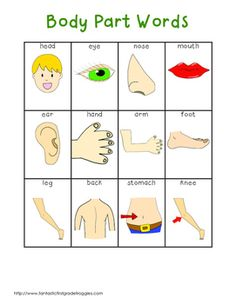 Writing Center List- Body Part Words Kids English, English Lessons, English Words, Learn English, English English, English Class, English Grammar, English Language, Body Preschool