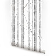 Birch Tree - traditional - Wallpaper - Simple Shapes