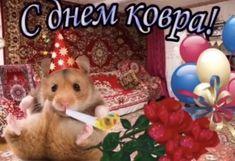 Hello Memes, Blue Aesthetic Pastel, Stupid Memes, Lol, Animals, Animaux, Animal, Animales, Fun