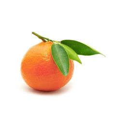 Red Mandarin oil was named after The Mandarins of China. It is a non toxic essential oil. As one of the safest essential oils it is often recommended for children and for use during pregnancy, used in the blend of Infinatura Cura oil as it is known for helping to soften stretch marks.  Check out Infinatura Cura Oil #InfinaturaHeals #Natural #CrueltyFree