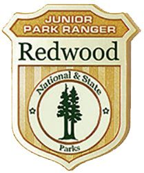 Junior Ranger....need to make sure we get badges for the kids when we visit the National Parks along our route