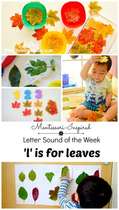 Leaf activities for toddlers this autumn. Lots of fun ways to learn about leaves, colors and other sensorial activities