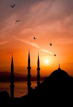 Capturing silhouette of Blue Mosque, Istanbul, Turkey in an evening Sunset.