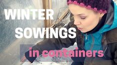 How to: winter sowings in plastic containers. How to sow when you have little space. How to be self sufficient in less than 1 acre. Growing Veggies, Harvest Season, Plastic Containers, Summer Flowers, Acre, How To Become, Seeds, Seasons, Winter