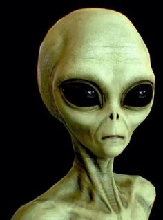 Scientist says Aliens in UFOs might be Earthlings from the Future - Aliens are Humans Aliens Guy, Les Aliens, Aliens And Ufos, Alien Gris, Grey Alien, Alien Pictures, Alien Photos, Ancient Aliens Meme, Alien Symbols
