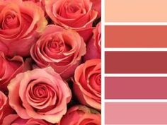 Looking for best feng shui colors for a room but don't have the time to define your home bagua?  Our quick feng shui color guide will help.: Southwest Room Colors